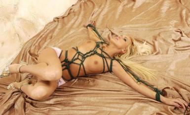 Free Erotic Spanking Story